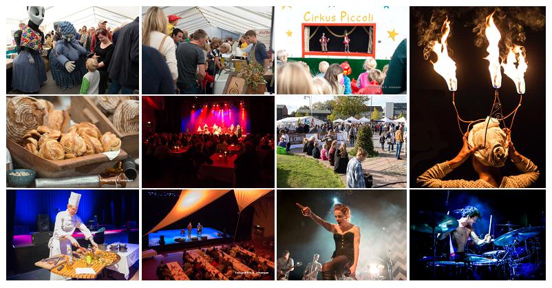 matfestival_collage